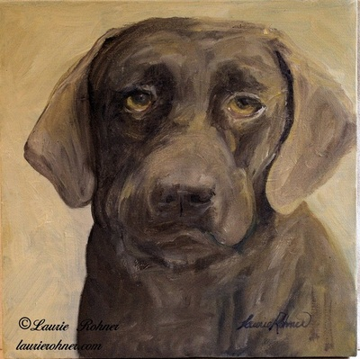 Brown Chocolate Lab  Oil on Canvas by laurierohner.com