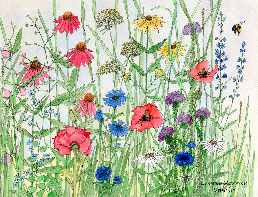 Watercolor Illustration Garden Flowers